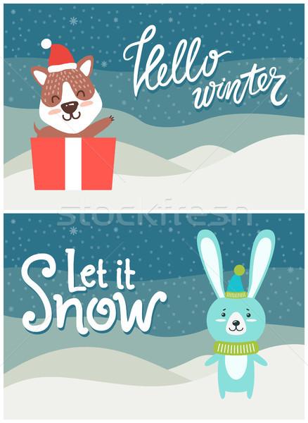 Hello Winter Let it Snow Bright Snowy Postcard Stock photo © robuart