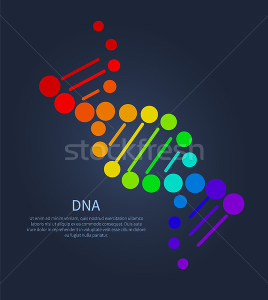 DNA Deoxyribonucleic Acid Chain Nucleotides Poster Stock photo © robuart