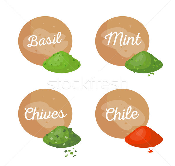 Basil and Mint Spices Set Vector Illustration Stock photo © robuart