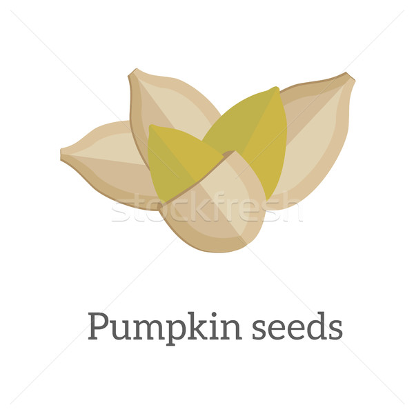 Pumpkin Seeds Vector Illustration in Flat Design   Stock photo © robuart