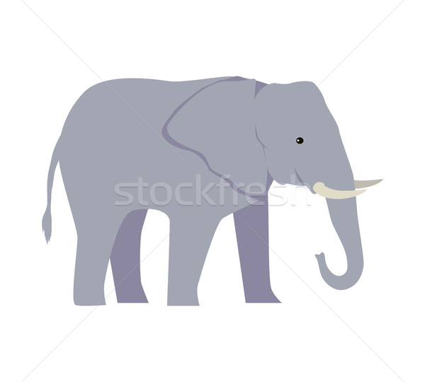 Elephant Large Cartoon Mammal Isolated on White. Stock photo © robuart