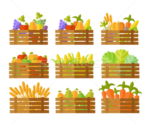 Set of Boxes With Fruits and Vegetables in Vector. Stock photo © robuart