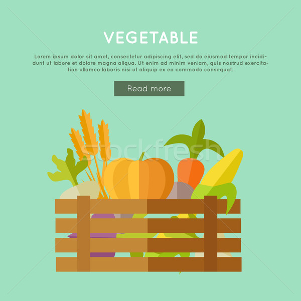 Vegetable Vector Web Banner in Flat Design.  Stock photo © robuart