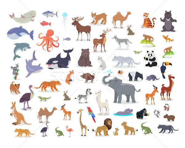 Duży zestaw świat zwierząt gatunek cartoon Zdjęcia stock © robuart