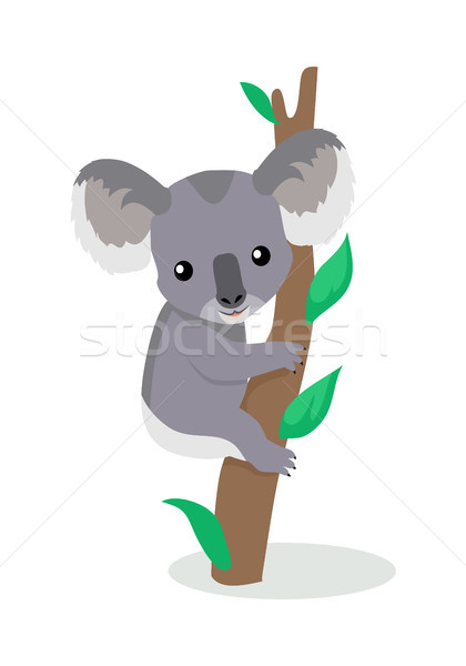 Stock photo: Koala Cartoon Flat Vector Illustration