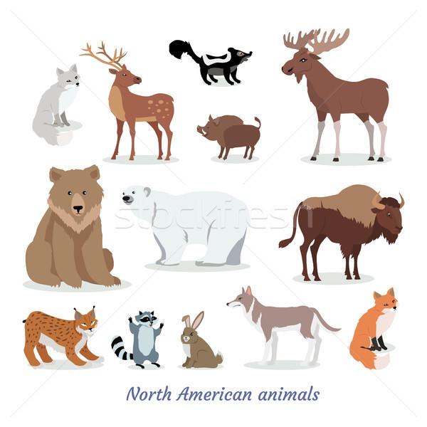 észak amerikai állatok rajz ikon szett szett Stock fotó © robuart