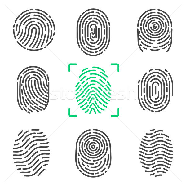 Collection of Fingerprints on Vector Illustration Stock photo © robuart