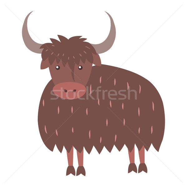 Cute Yak Cartoon Flat Vector Sticker or Icon Stock photo © robuart