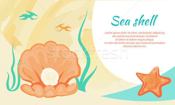 Sea Shell Creative Poster with Valued Gemstone Stock photo © robuart