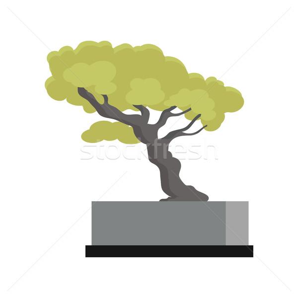 дерево сувенир Денежное дерево икона современных служба Сток-фото © robuart