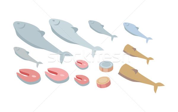 Conjunto fresco peixe orgânico frutos do mar vetor Foto stock © robuart