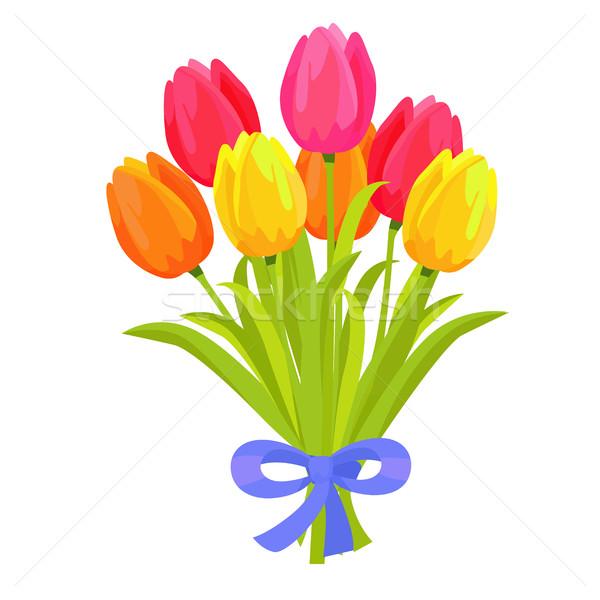 Bella bouquet sette multicolore tulipani design Foto d'archivio © robuart