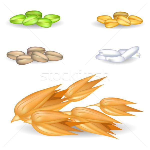 燕麦 穀類 その他 収穫 白 ビッグ ストックフォト © robuart