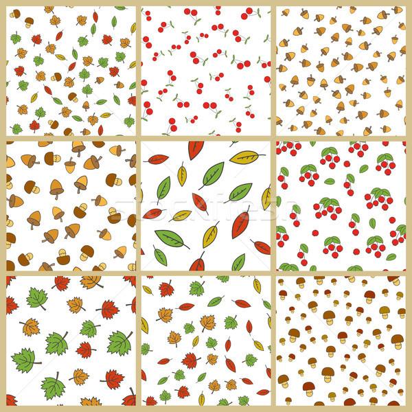 Zdjęcia stock: Jesienią · roślin · wektora · zestaw