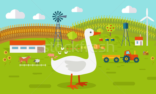 Goose on Farmyard Concept Illustration.   Stock photo © robuart