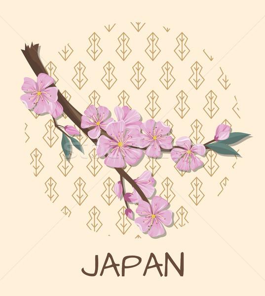 Foto stock: Japón · promoción · anunciante · sakura · rama · patrón