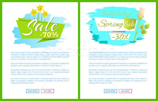 Primavera venda teia cartaz buquê narcisos Foto stock © robuart