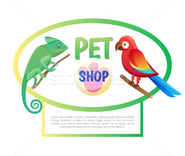 Stok fotoğraf: Evcil · hayvan · alışveriş · poster · hayvanlar · metin · örnek