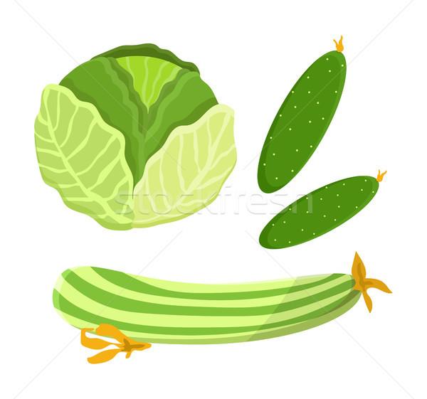 огурца капуста коллекция набор овощей Сток-фото © robuart