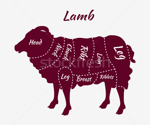 Cuts of Lamb or Mutton Diagram Stock photo © robuart