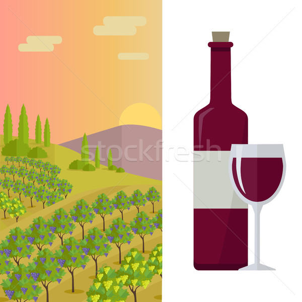 Rural Landscape with Vineyard Stock photo © robuart