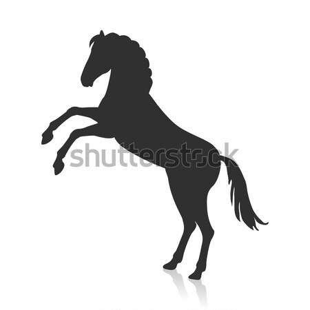 Rearing Grey Horse Illustration in Flat Design Stock photo © robuart
