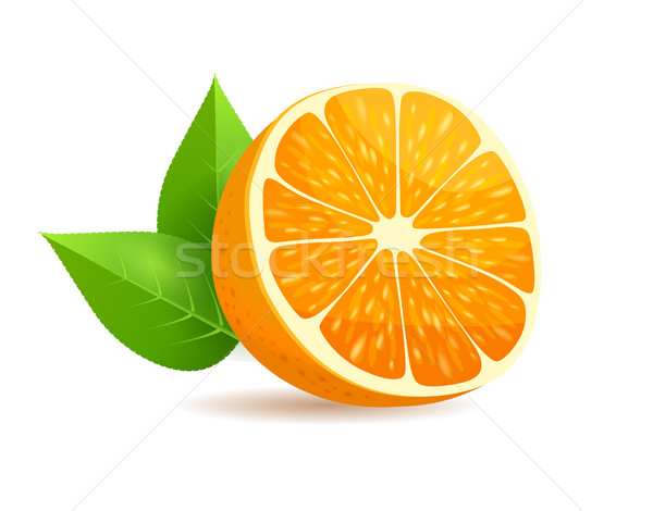 Photo stock: Orange · laisse · réaliste · vecteur