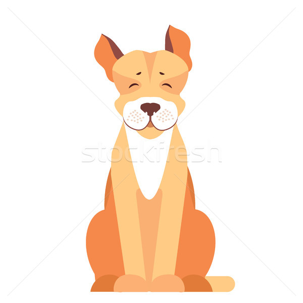 Cute Pit Bull Dog Cartoon Flat Vector Icon Stock photo © robuart