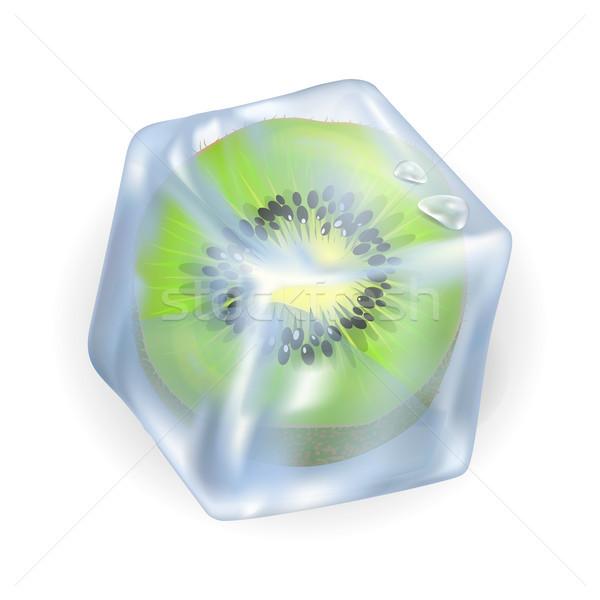 Frozen Kiwi in Ice Cube Isolated Illustration Stock photo © robuart