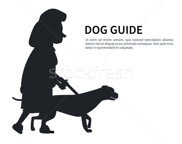 Dog Guide Silhouette Old Woman Holding Pet Vector Stock photo © robuart