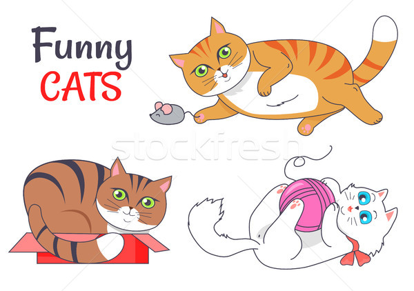 Funny Cats Sleeping in Red Box Playing Grey Mouse Stock photo © robuart