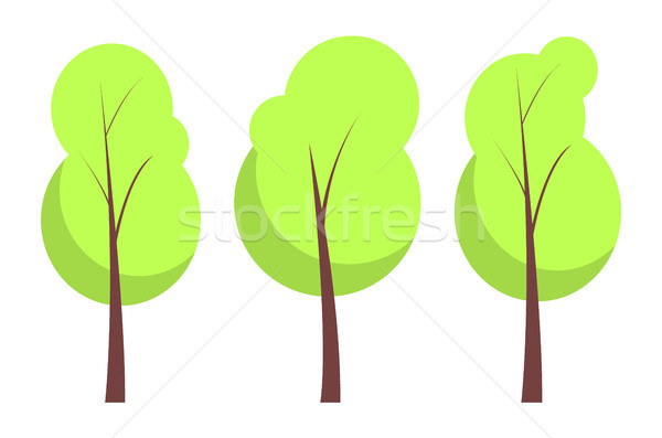 Summer Trees Collection Poster Vector Illustration Stock photo © robuart
