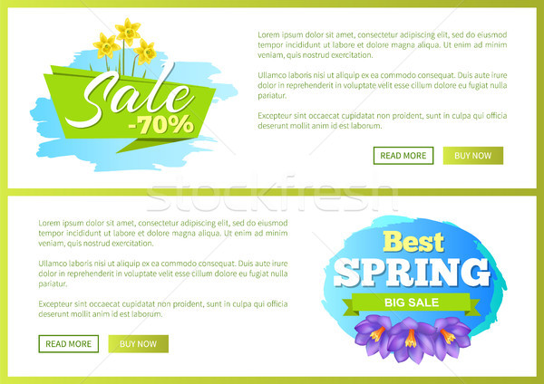Stockfoto: Best · voorjaar · groot · verkoop · advertentie · label