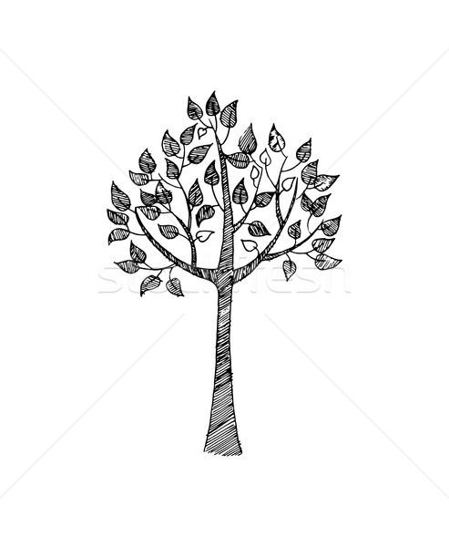 手描き スケッチ ツリー 黒白 色 色 ストックフォト © robuart