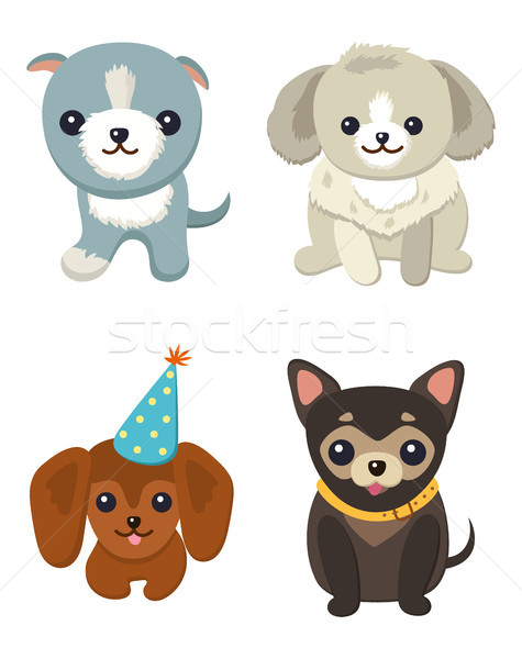 Four Pretty Puppies Isolated on White Background Stock photo © robuart