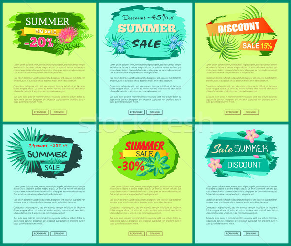 Seasonal Discount at Internet Shop Pages Templates Stock photo © robuart
