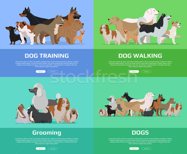 Dog Walking, Training, Grooming Banners. Stock photo © robuart