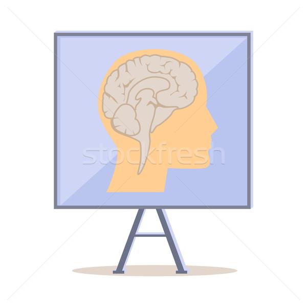 Bordo umani testa silhouette cervello vettore Foto d'archivio © robuart
