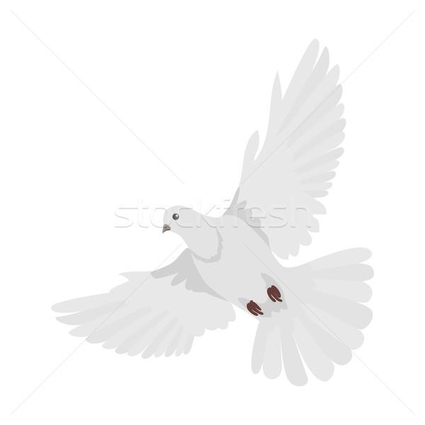 Pigeon Flat Design Vector Illustration Stock photo © robuart