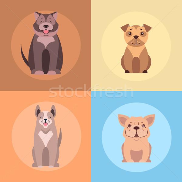 Aranyos fajtiszta kutyák rajz vektorok ikon szett Stock fotó © robuart