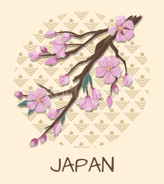 Japan Promo Poster with Sakura Branch and Pattern Stock photo © robuart