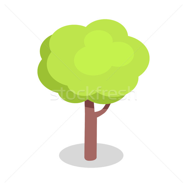 Green Tree with Bushy Crown and Brown Trunk Vector Stock photo © robuart