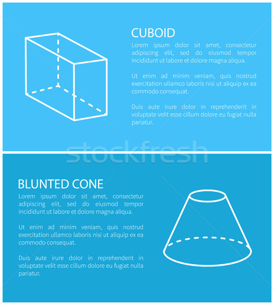 Cuboid and Blunted Cone Set Vector Illustration Stock photo © robuart