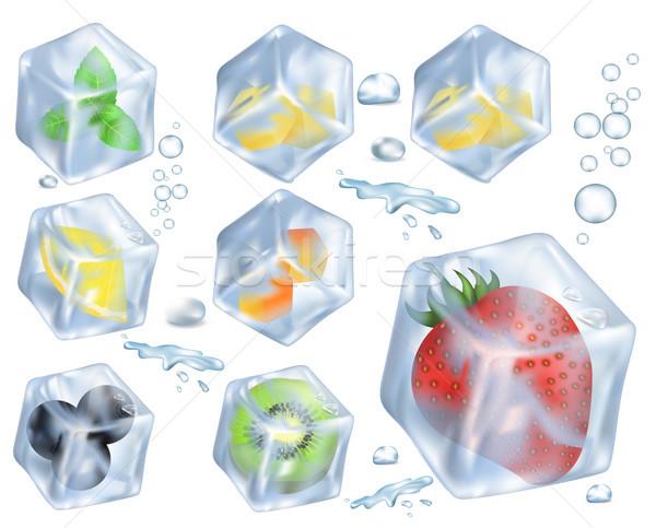 Früchte Beeren Kraut Eis Illustrationen rot Stock foto © robuart