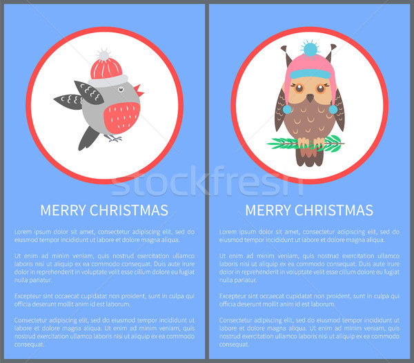Heiter Weihnachten 60s 70er Jahre Vögel Postkarte Stock foto © robuart