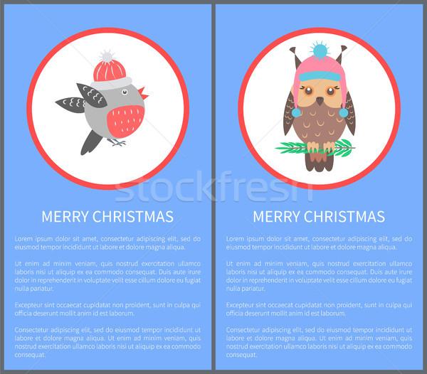 Alegre Navidad 60s 70s aves postal Foto stock © robuart