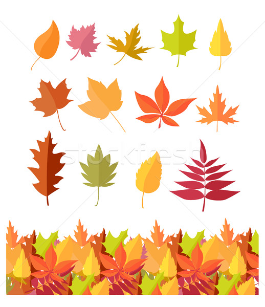 Stock fotó: Szett · fa · levél · ikonok · őszi · levelek · izolált