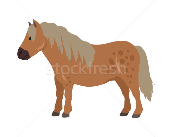 Red Pony Vector Illustration in Flat Design Stock photo © robuart