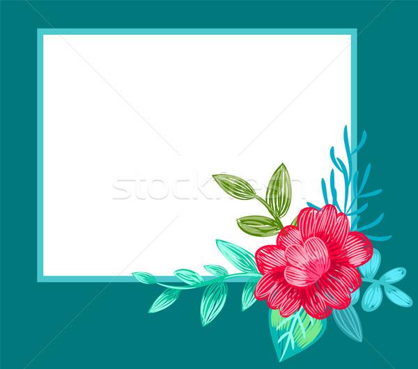 Pocztówkę odznaczony kwiat niebieski placu ramki Zdjęcia stock © robuart