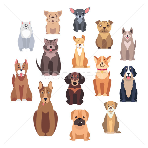 Cartoon hond geïsoleerd illustraties ingesteld witte Stockfoto © robuart